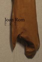 joan-rom-ert-publicacio-destacada