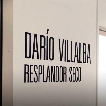 Visites comentades a <em>Darío Villalba. Resplandor seco</em>