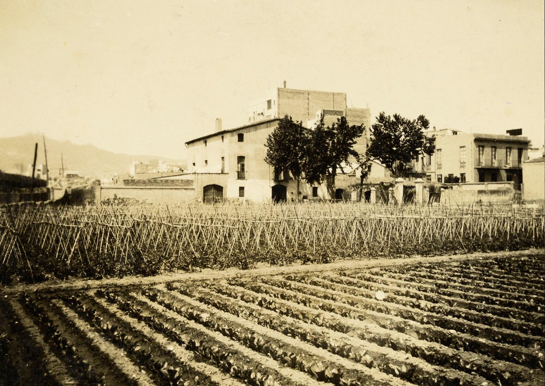 1931 AMDS Horts de la masia de can Mantega i al fons edificis del districte de Sants i la serra de Collserola. Autor Manuel Blasi