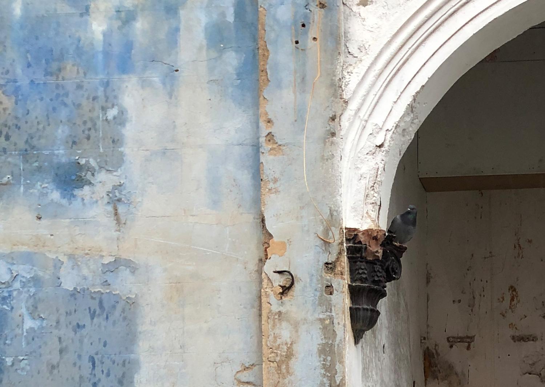 Cal Nicasi arch photo Alexia Medici