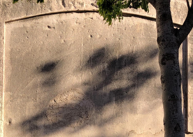 wall-Cal-Nicasi-forgotten-photoAlexia-Medici